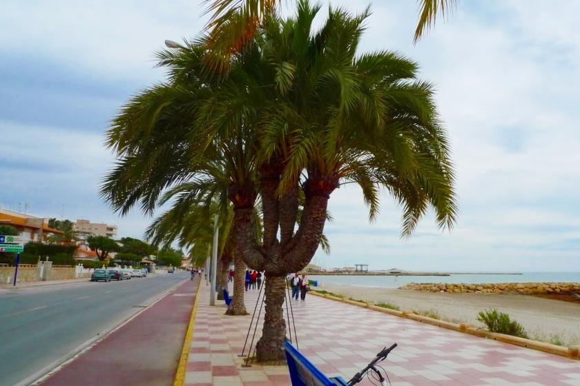 Un carril bici en una ciudad española
