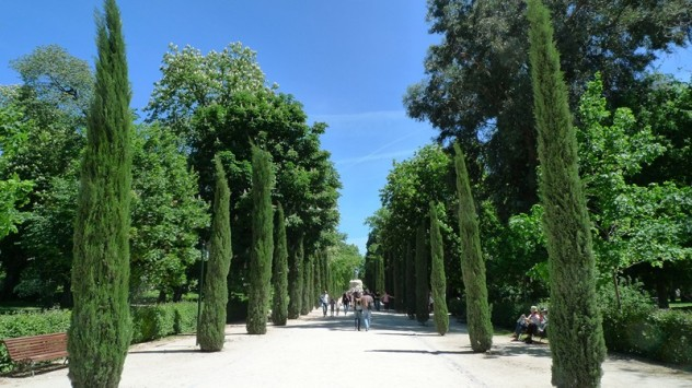 Postards Retiro Madrid (18)