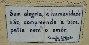 Sin alegría la humanidad no puede entender la simpatía o el amor.