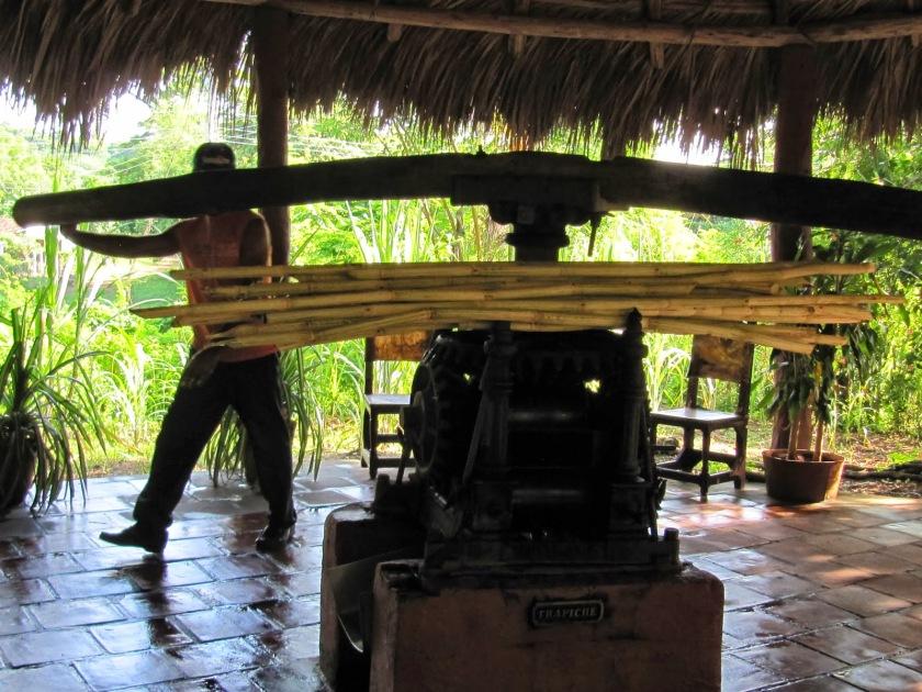 """Trapiche actual para hacer """"guarapo"""" en Trinidad Foto cedida por L.E.N (2010)"""