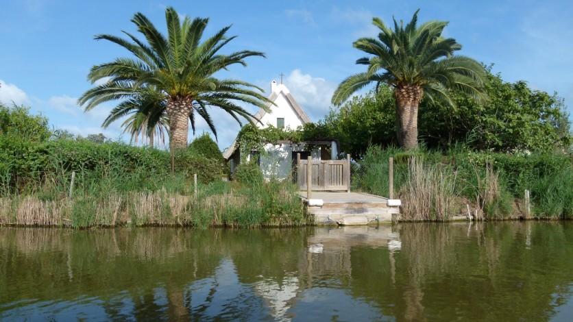 parque albufera valencia (8)