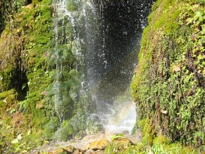 Sitios naturales como éstos te esperan en tu viaje Cívica - Guadalajara - España