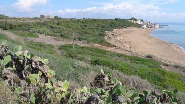selinunte_sicilia (3)