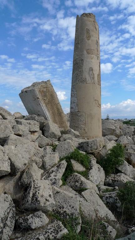selinunte_sicilia (4)