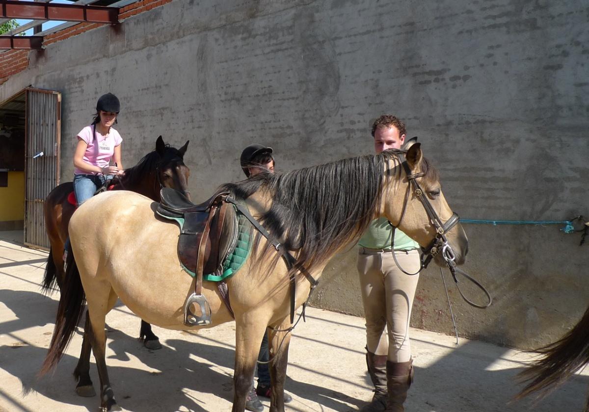Consejos para montar a  caballo y ...no caer en el intento