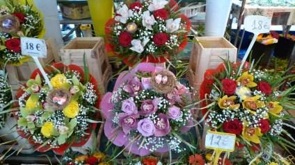 flores niza (10)