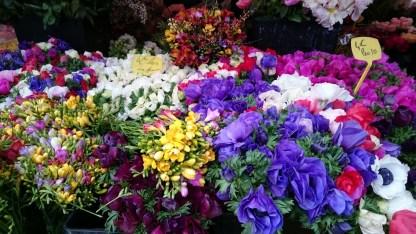 flores niza