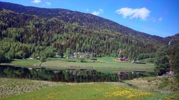 paisaje desde oslo to myrdal