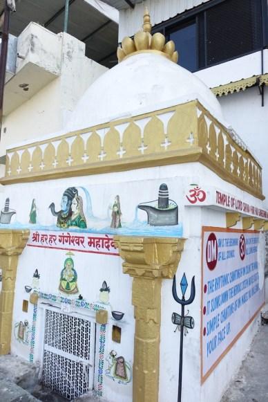 Udaipur ciudad (7)