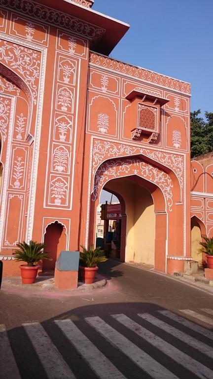Jaipur (213)