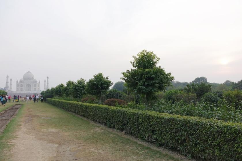 Taj Mahal (16)