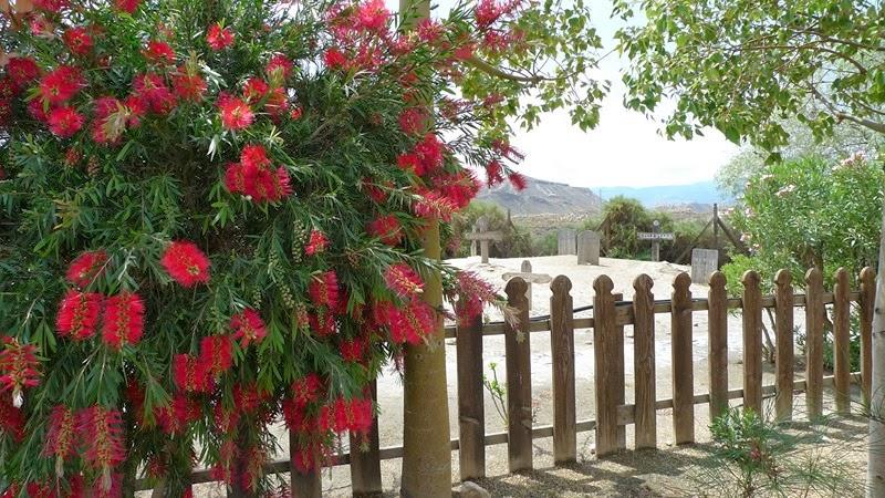 tabernas-oeste-americano-almeria-29_12945241634_o