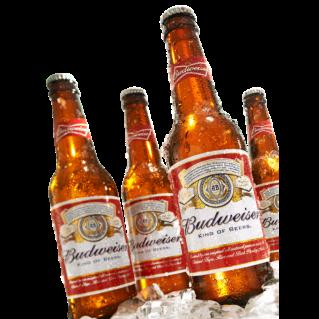 budweiser usa cerveza