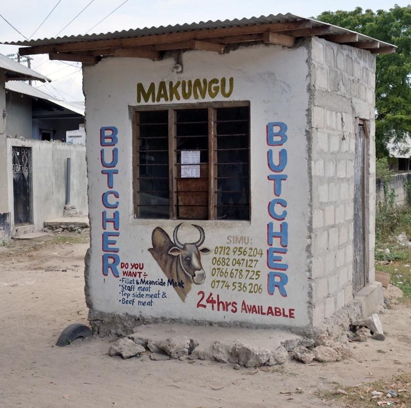 fotos curiosas tanzania (36)