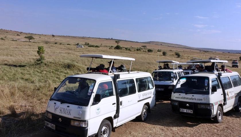 Masai Mara (337)