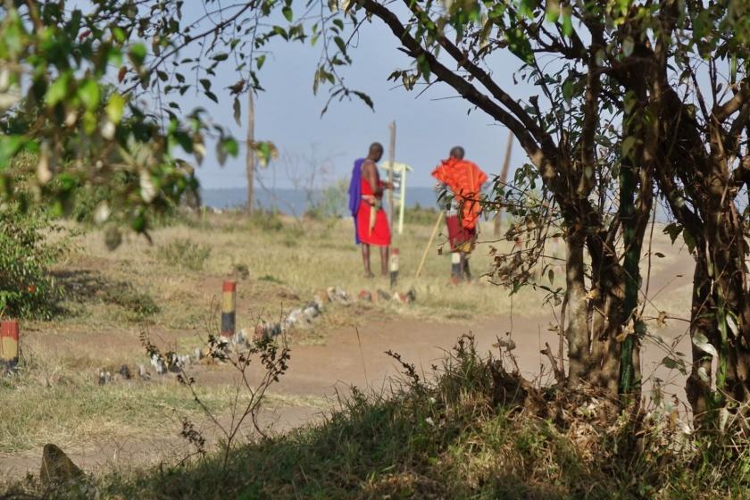 Masai Mara (603)