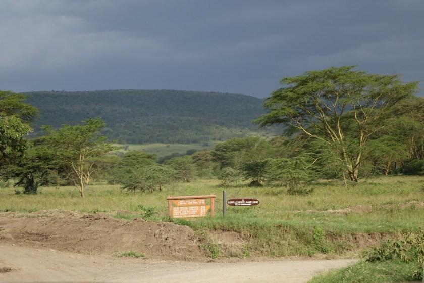 Nakuru Parque (21)