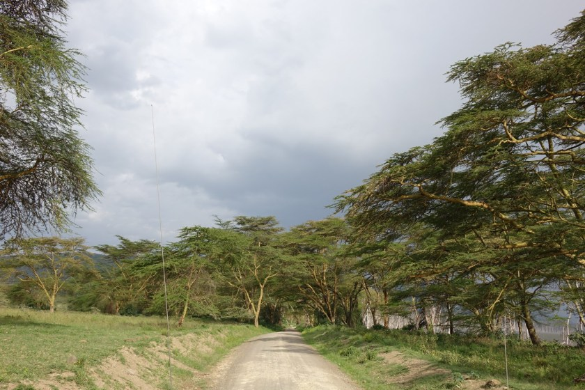 Nakuru Parque (26)