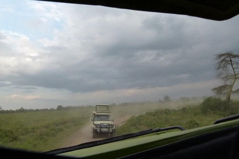Nakuru parque II (48)