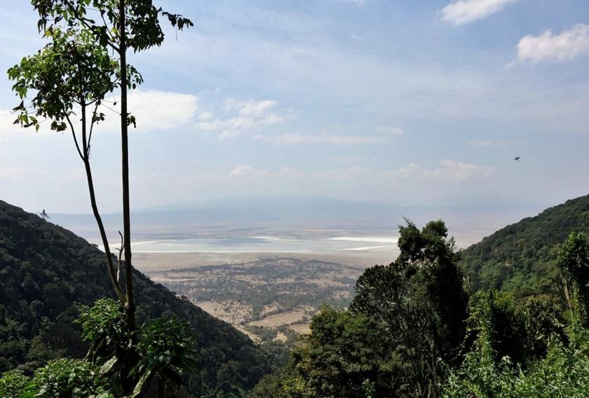 Ngorongoro (184)