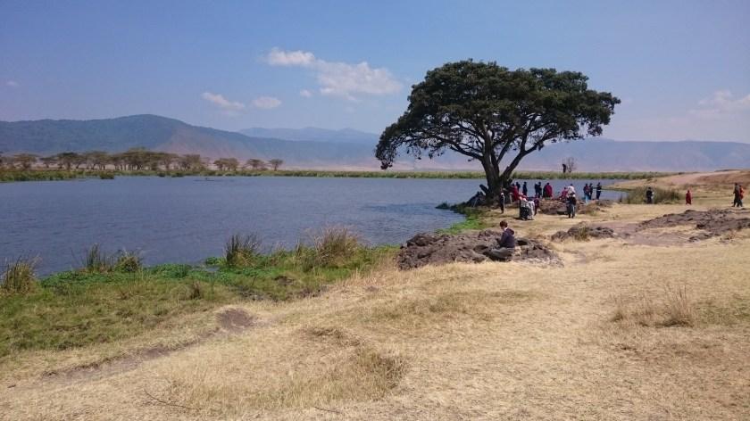 Ngorongoro Crater (252)