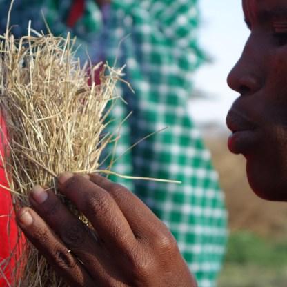 Poblado Masais (40)