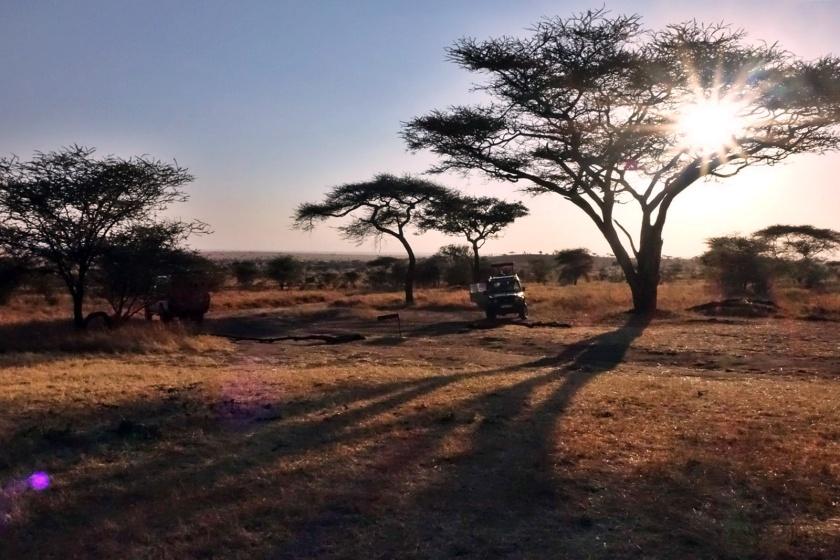 Serengueti (122)