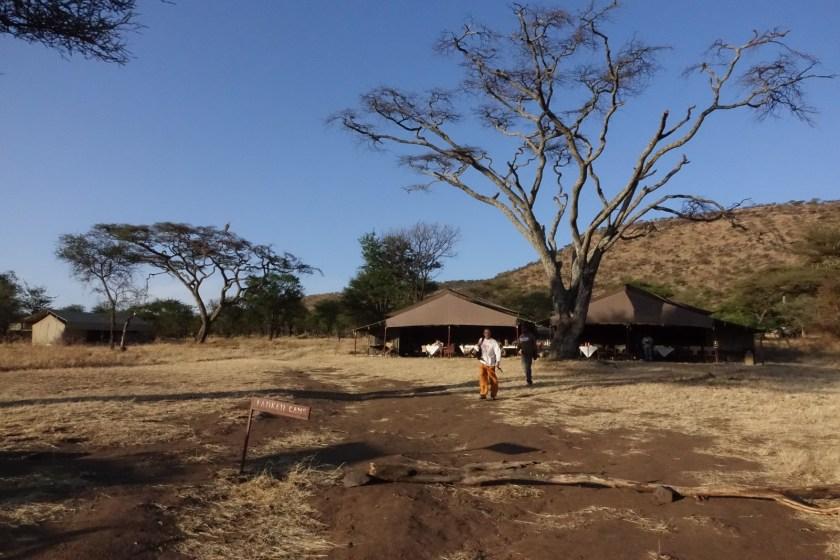 Serengueti (129)