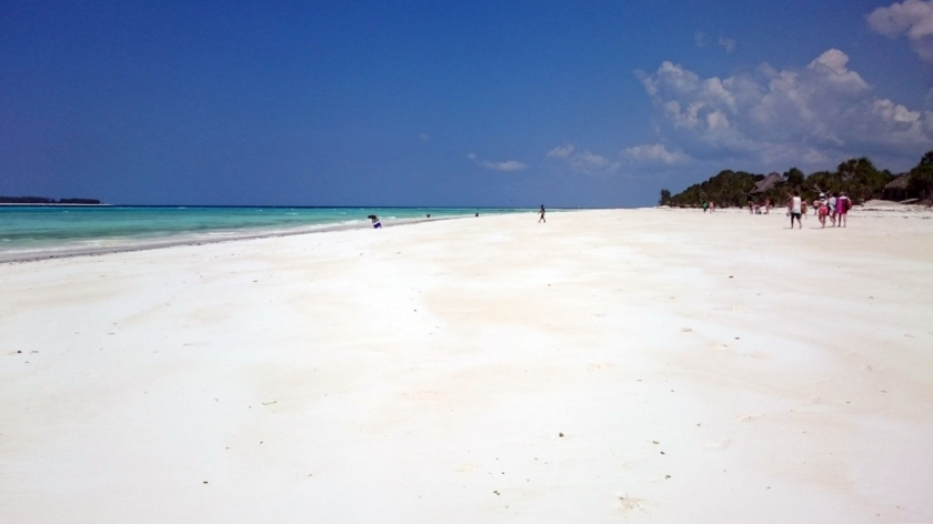 atolon-mnemba-zanzibar-62