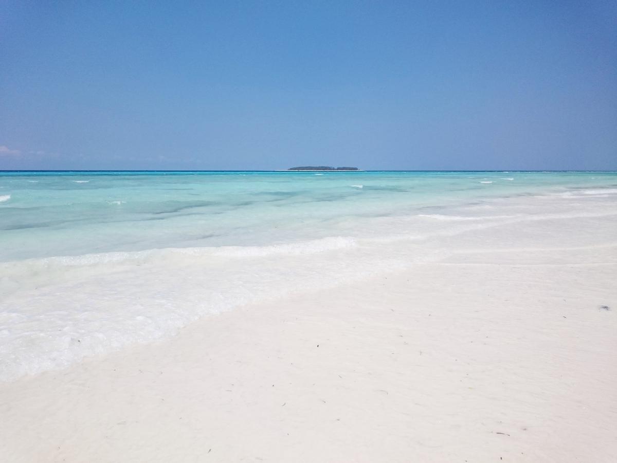 """Un viaje """"surrealista"""" en dhow al Atolón Mnemba, Zanzibar"""