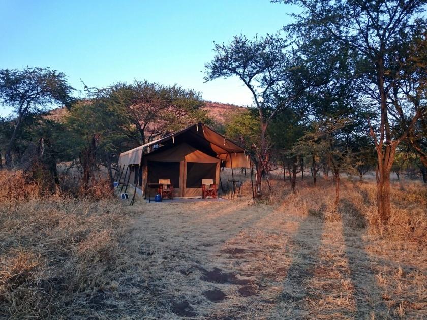 kati-kati-camp-serengueti