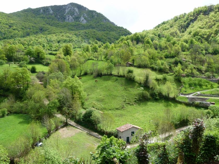 pendones-asturias-2