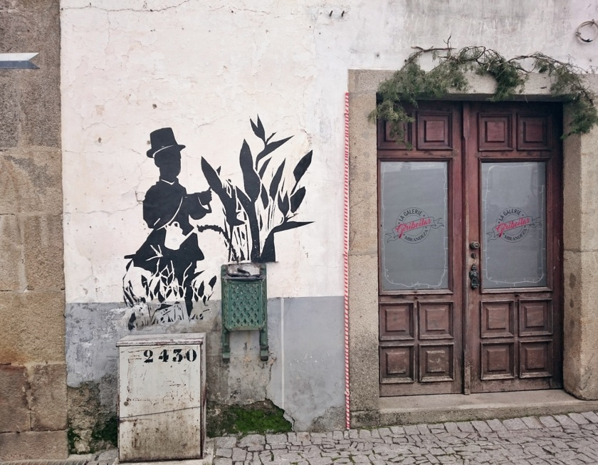 mirando-duero-arribes-portugal-3