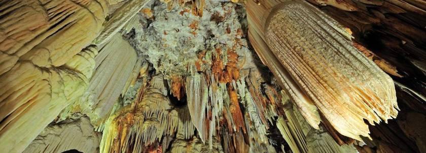 Cuevas-Aguila