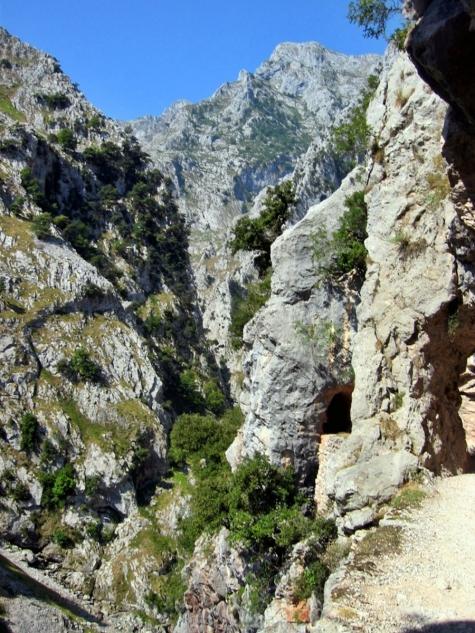 ruta cares asturias (4)