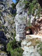 ruta cares asturias (5)
