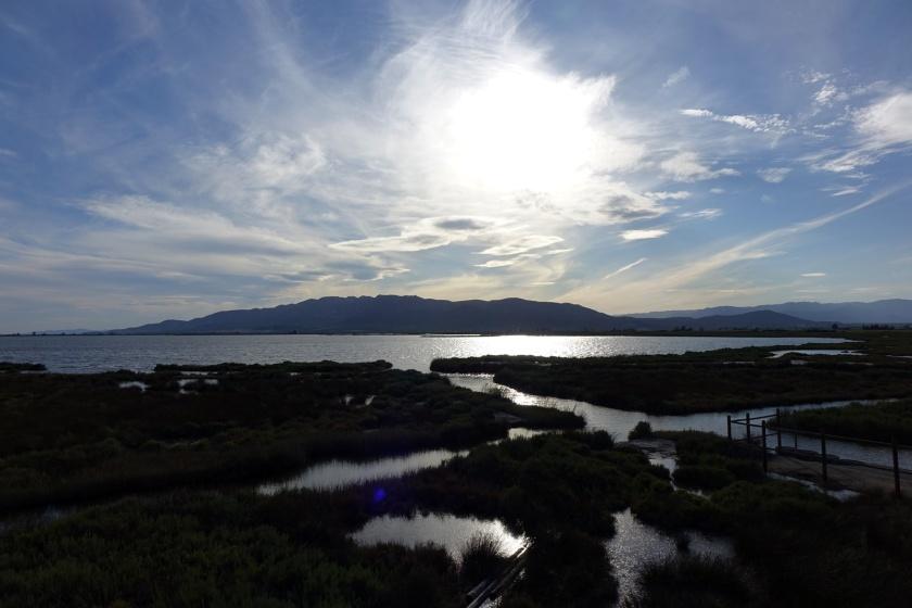 Paisajes que nos brinda el Delta del Ebro